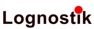 Logo Lognostik Projekt- und Prozessmanagement